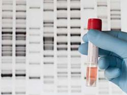 Genetic_consumer_test