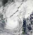NASA Goddard MODIS